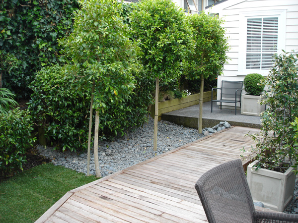 Brad thomson landscaping btbuild for Small garden designs nz
